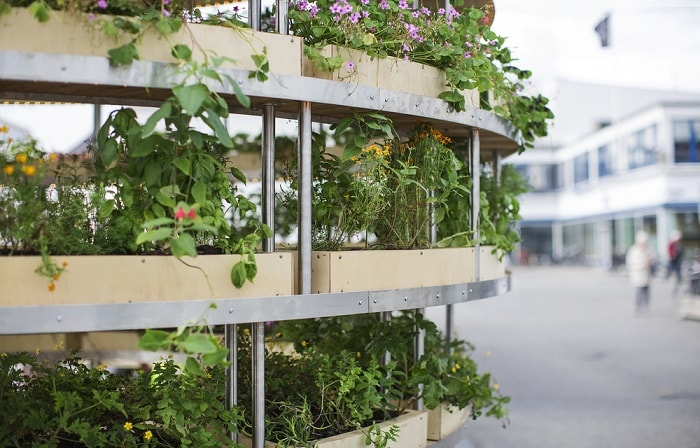 Close view of the growroom from space 10 with architects Sine Lindholm and Mads-Ulrik-Husum
