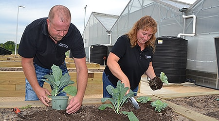 Sustainable urban agriculture - college dupage