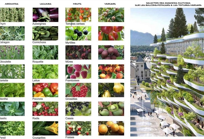 Vincent Callebaut Wins Bit The Foam of Waves to Revive Aix-Les-Bains' - urban farming fruit list